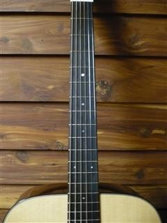 D1 Guitar